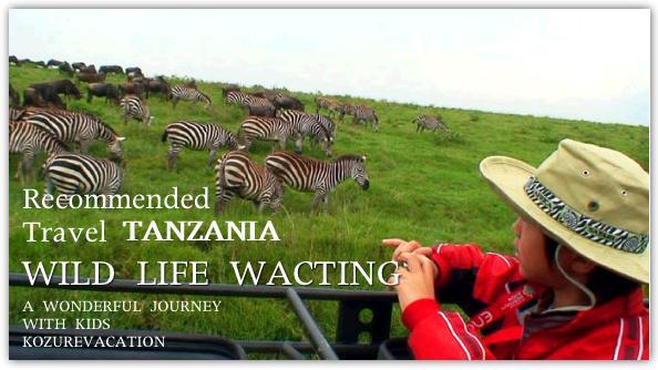子連れ海外野生動物観察