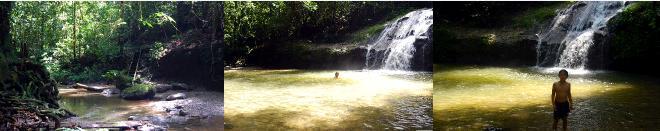 熱帯雨林の中の滝壺で泳ぐ子ども達