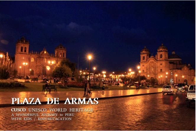 ライトアップされた夜のアルマス広場