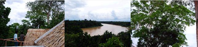 キナバタンガン川の眺め