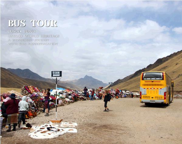 クスコからプーノへインカエクスプレスのバスの旅