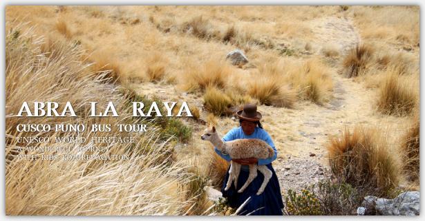 アルパビクーニャを抱えて歩く女性