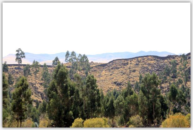 インカウォール。周囲の丘の尾根にそって築かれている。