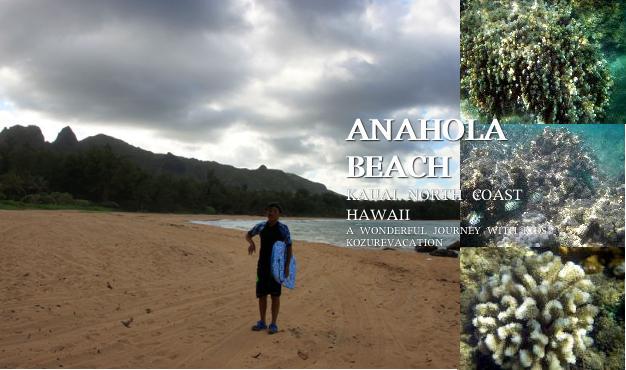 アナホラビーチと海中写真