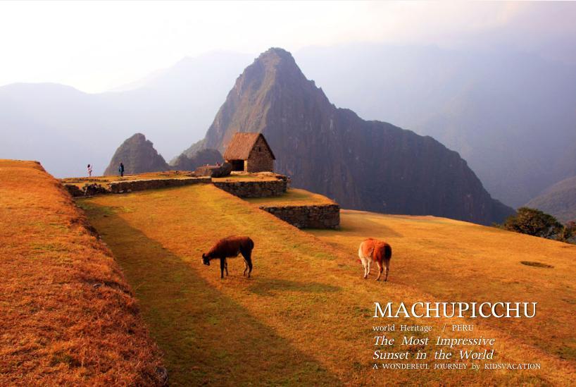 マチュピチュ遺跡の見張り小屋の周囲で草を食べるリャマ