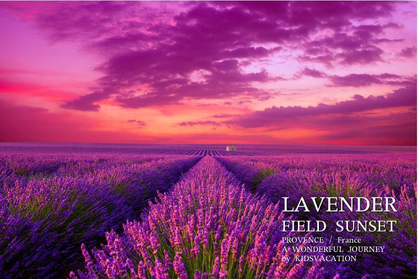 夕焼け雲とラベンダー畑