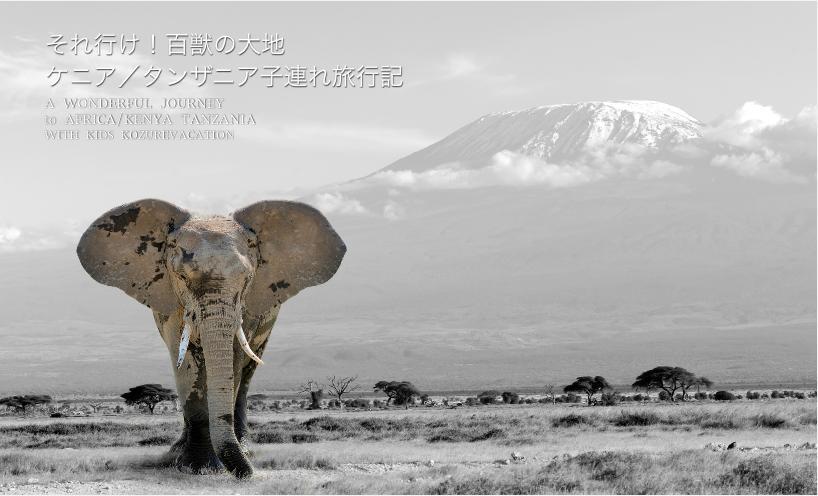 ケニア、タンザニア子連れ旅行記