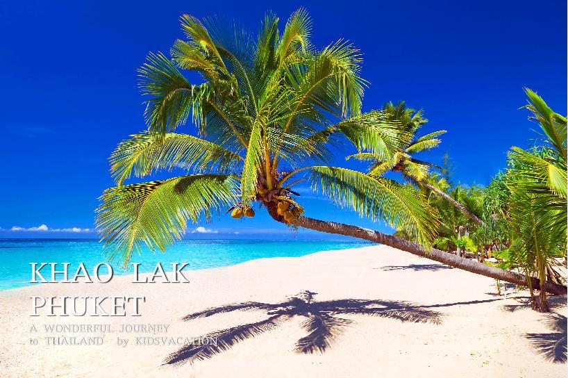 カオラックのビーチとヤシの木
