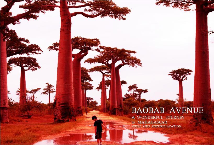 バオバブ並木の夕日