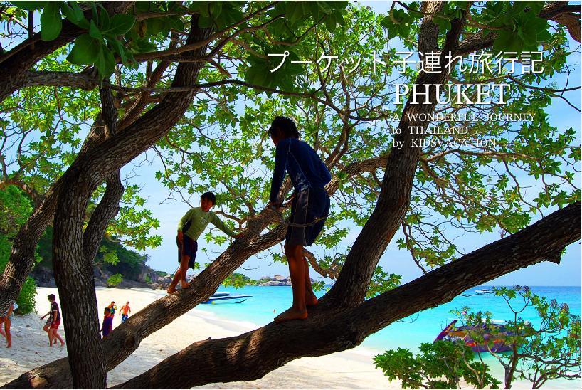 ビーチで木登りして遊ぶ子供たち