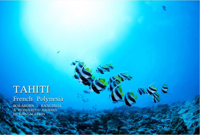 タヒチの海の中を泳ぐ熱帯魚