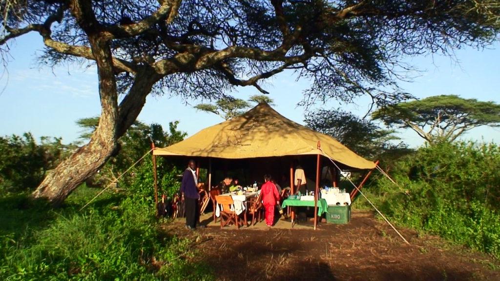 タンザニアでのグランピングの様子