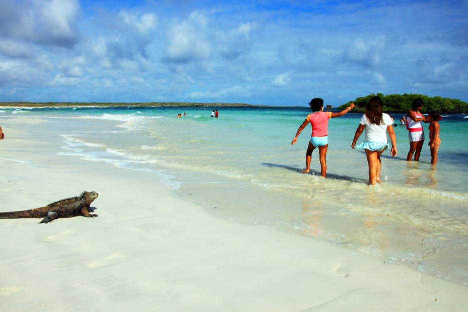 世界遺産ガラパゴス・サンタクルス島のビーチ