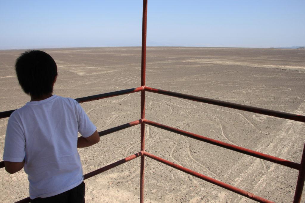 ミラドールから地上絵を眺める次男