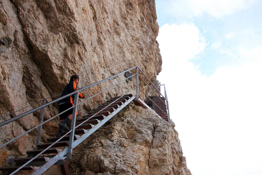 階段を登るりゅう