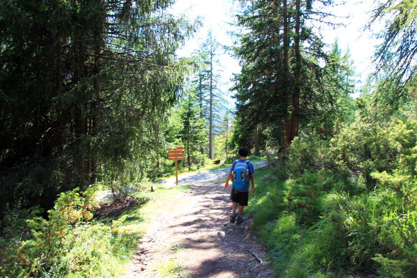 森の中を歩く次男