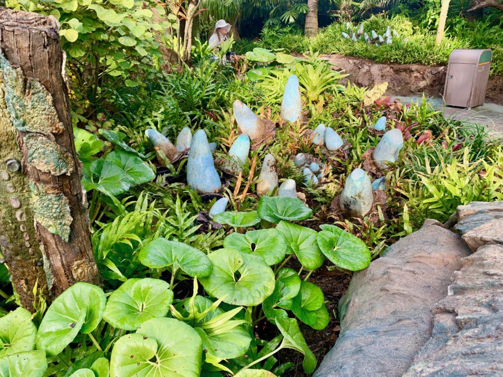 パンドラのめずらしい植物