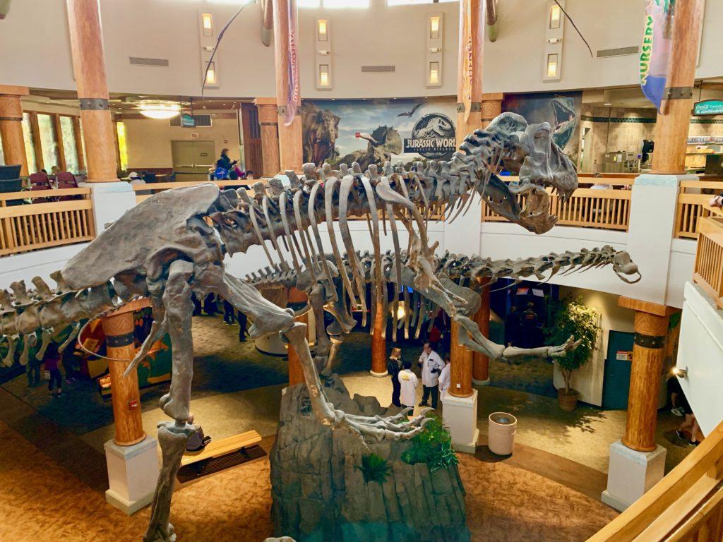 ジュラシックパーク・ディスカバリー・センターに展示されている恐竜の化石