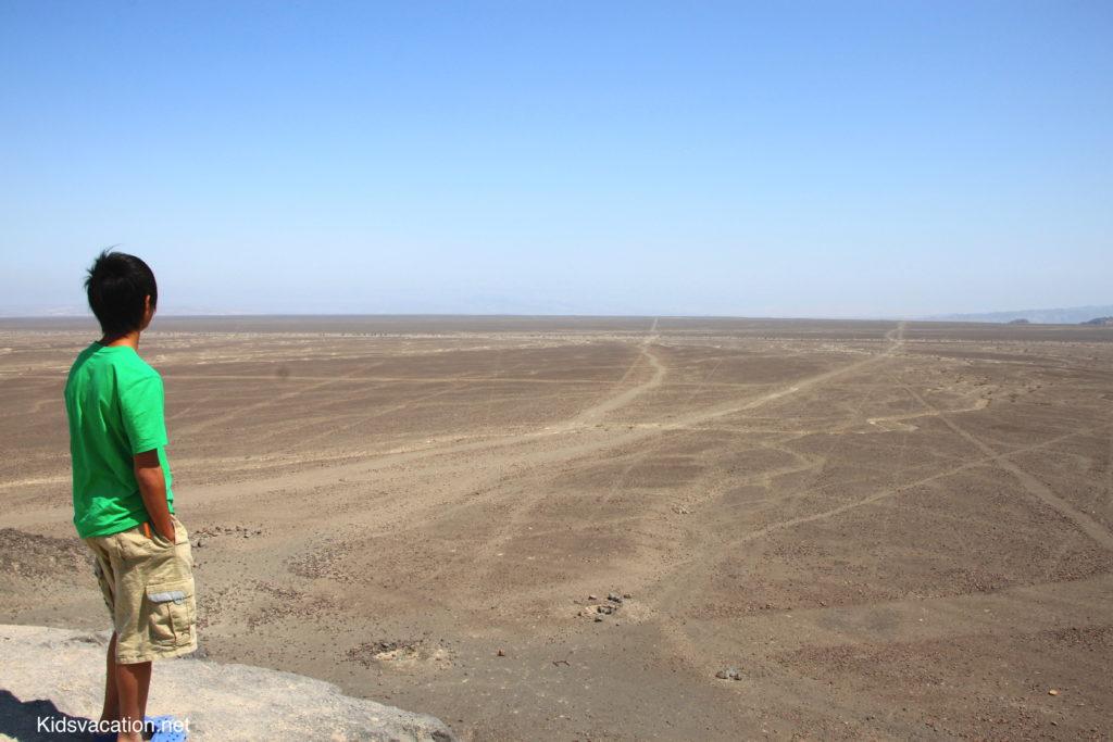 ナスカ平原に伸びる線を見つめる長男