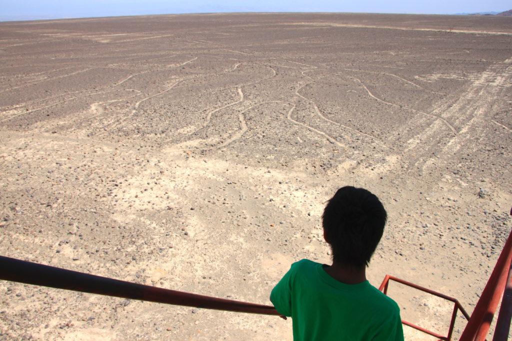 ミラドールの展望台から地上絵を見学する子ども達