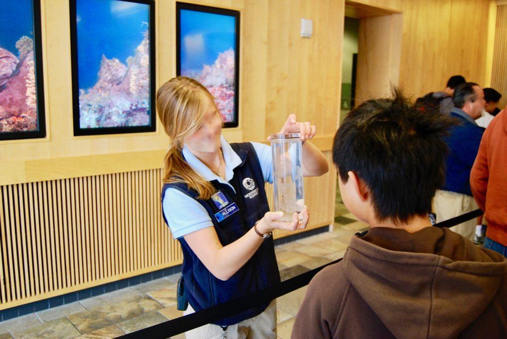モントレーベイ水族館でクラゲを見せてくれるスタッフ