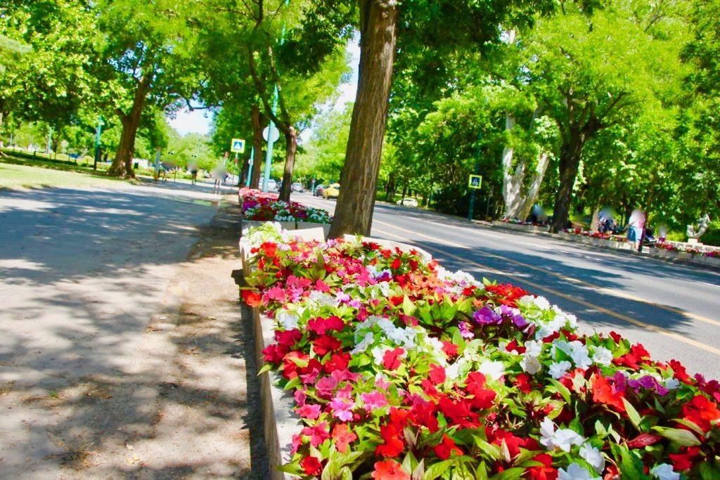 ブダペスト市民公園