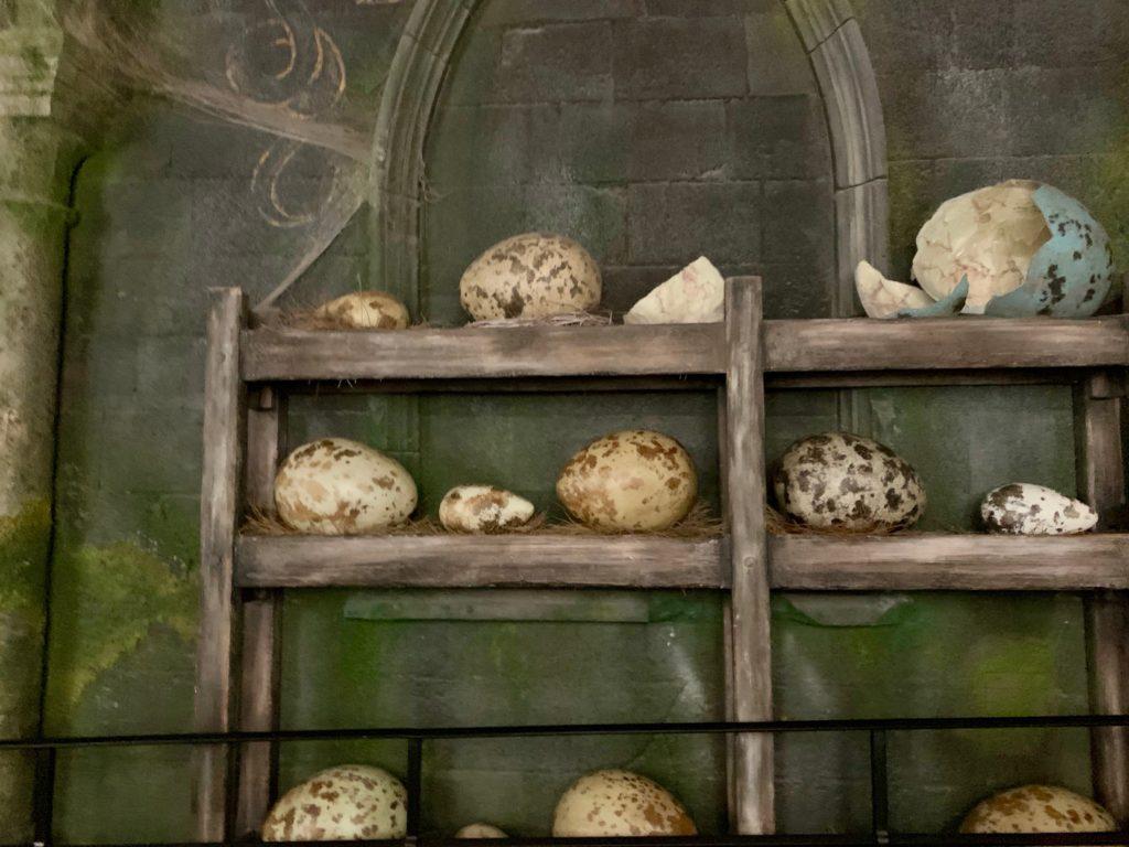 壁の棚に置かれた魔法生物の卵