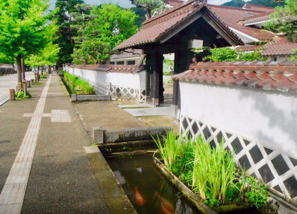 殿町通りの武家屋敷と鯉の泳ぐ掘割