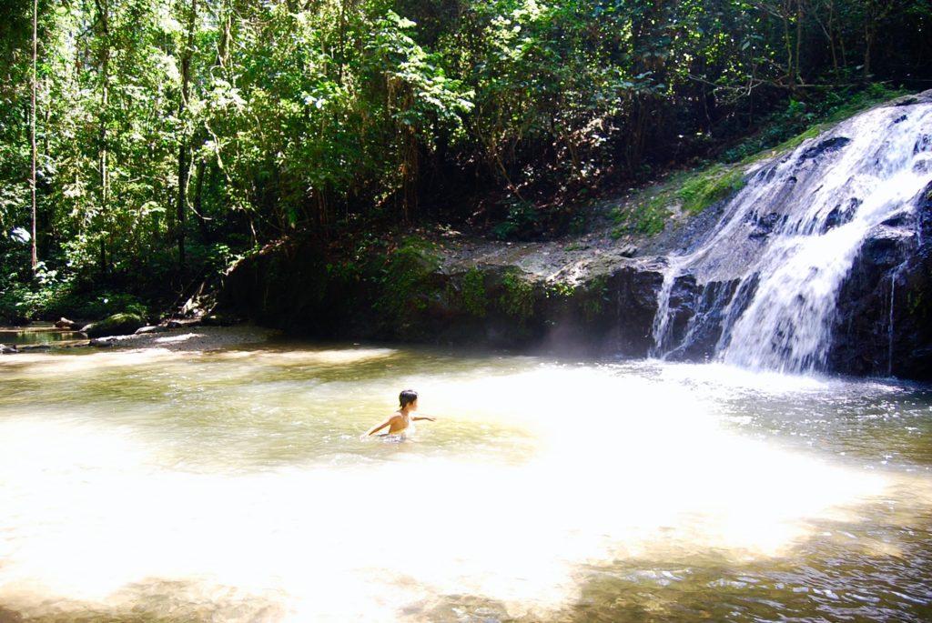 ジャングルの中の滝壺で泳ぐ子供達
