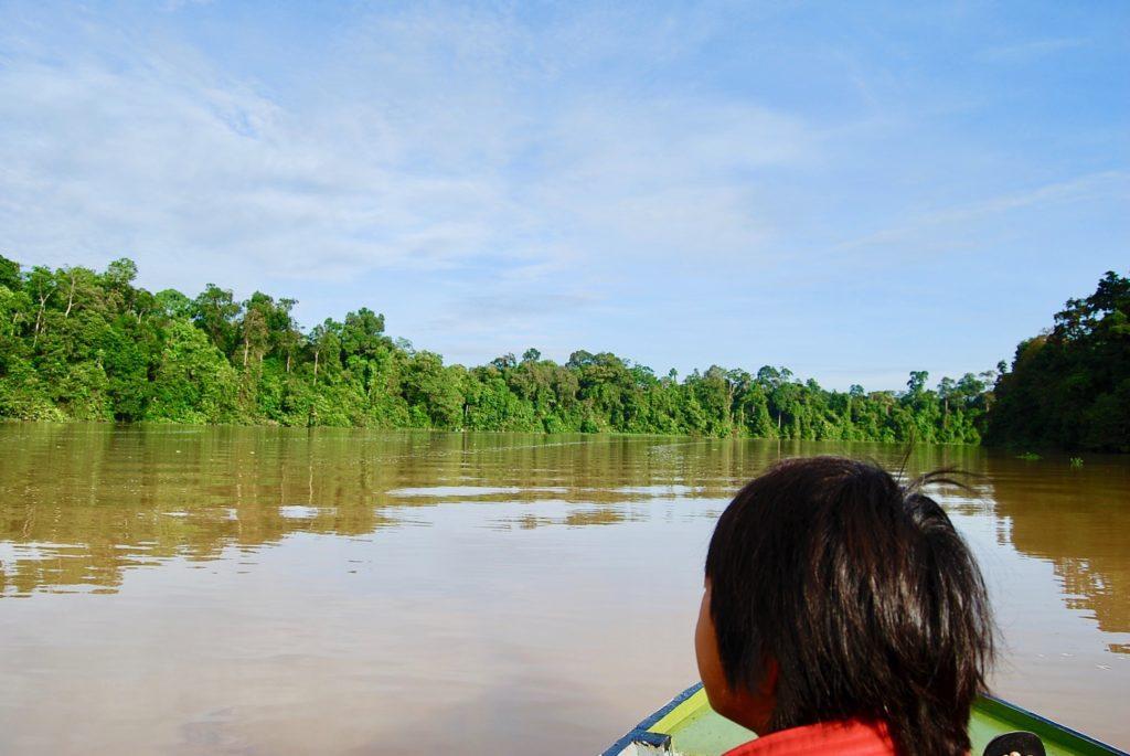 ボートに乗って熱帯雨林を見る長男