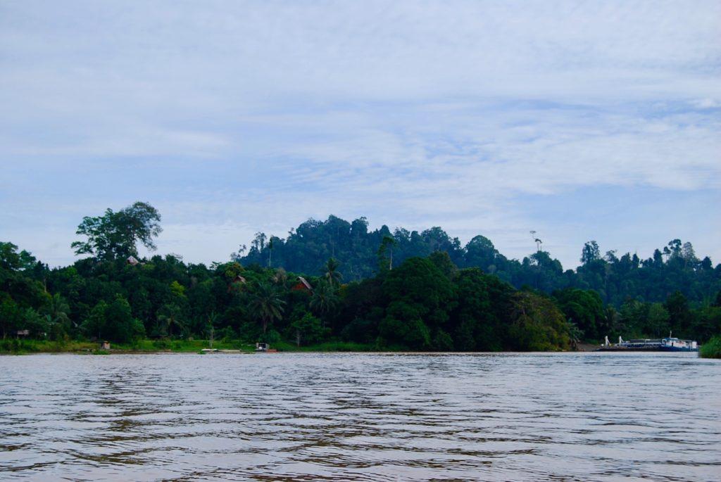 キナバタンガン川のほとりに建つスカウリゾート