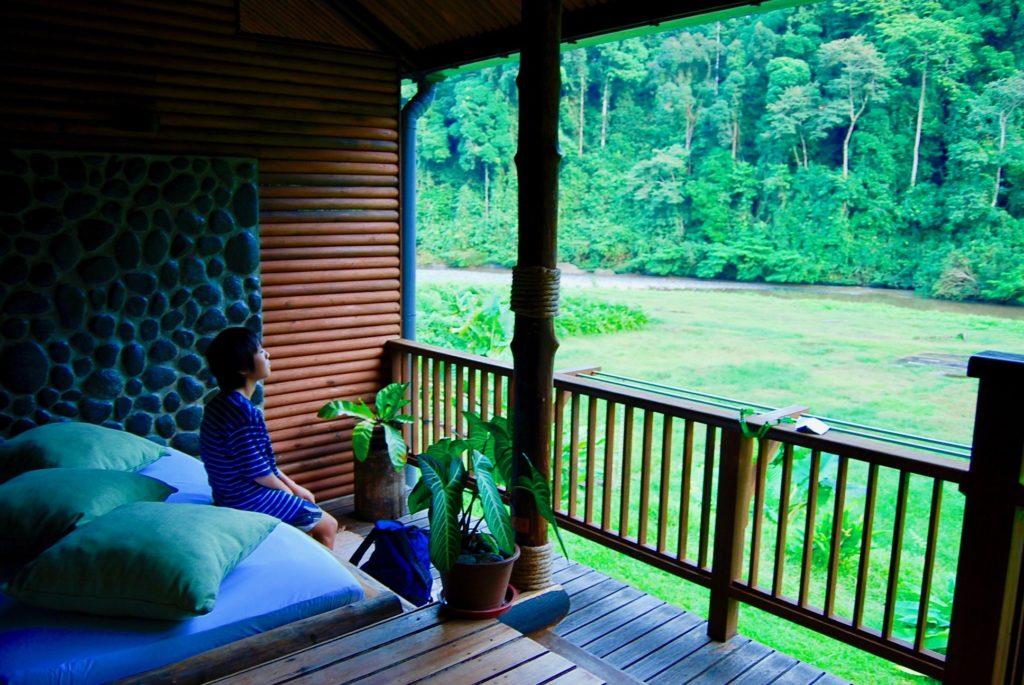 客室のバルコニーから原生林を眺める長男