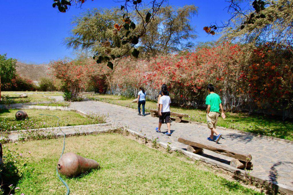 博物館の庭を歩くロサさんについていく子供達
