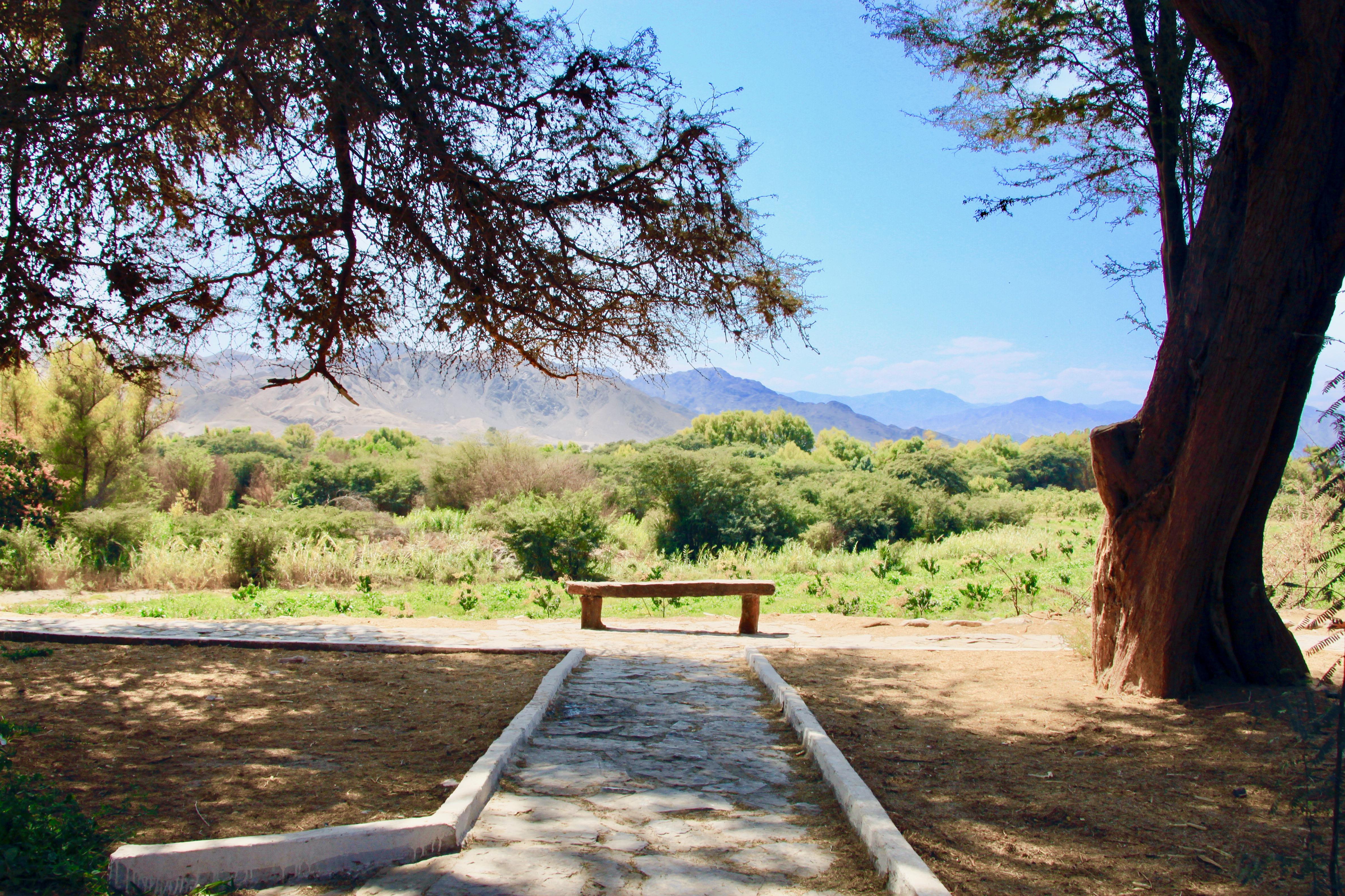 緑の渓谷の向こうにパルパ台地を望む