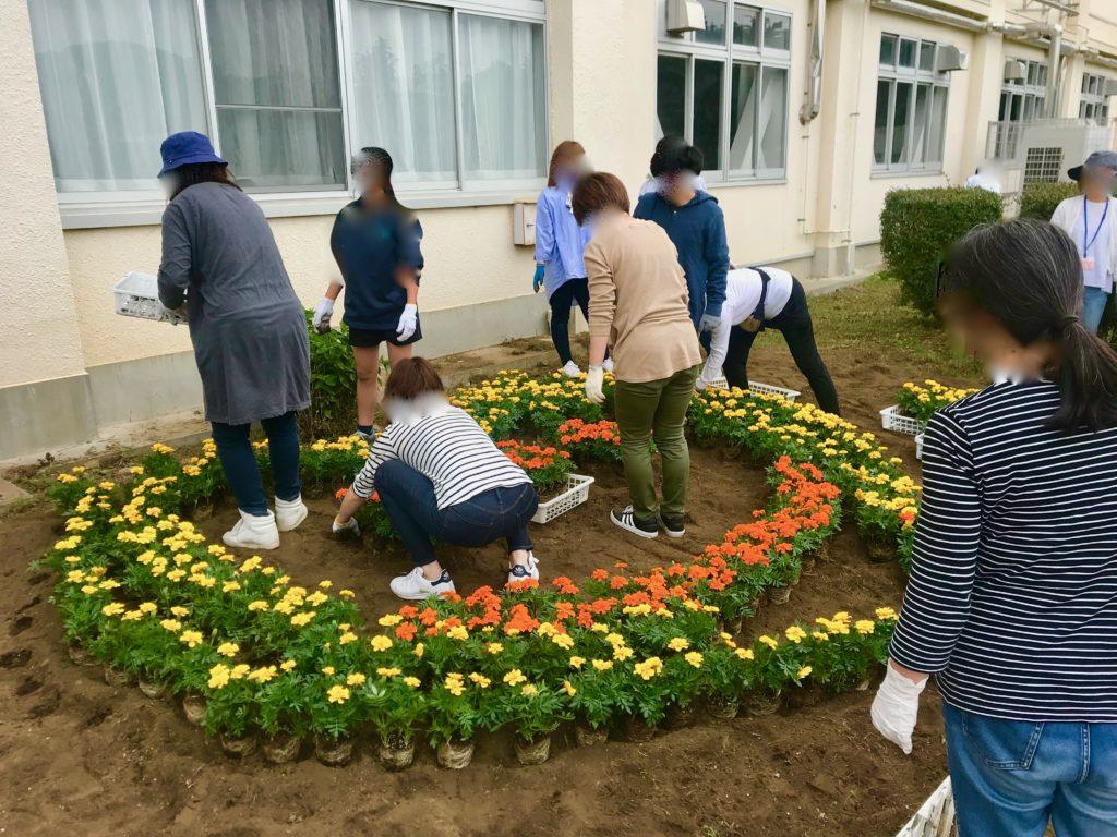 学校の花壇に花を植える保護者と生徒たち