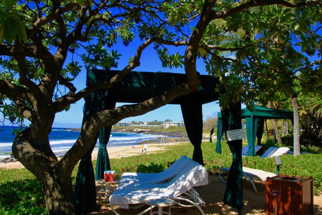 ビーチ沿いの木陰に設けられたカバナ