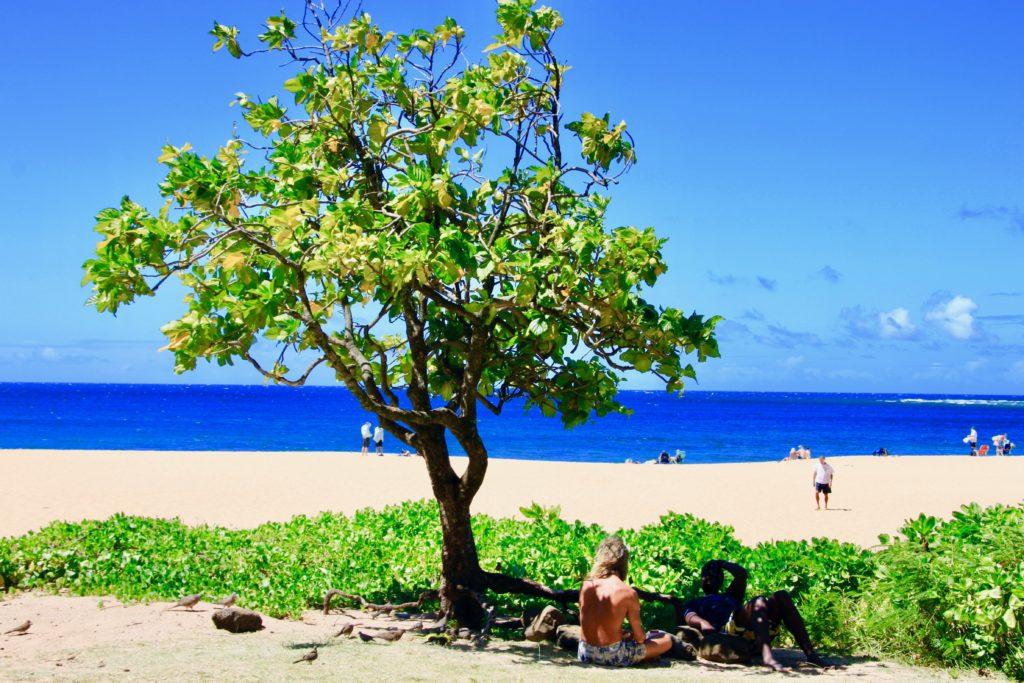 カウアイ島のハエナビーチでピクニックランチ