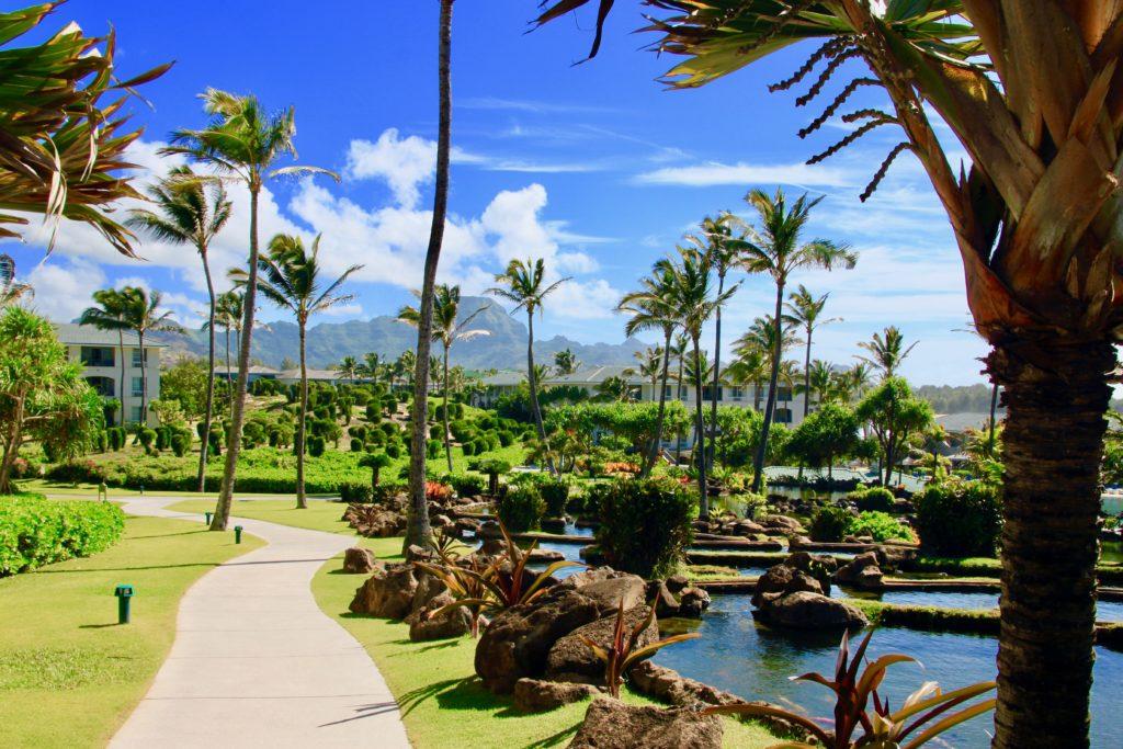 椰子の木が茂る庭園とは池に見えるポイプの山