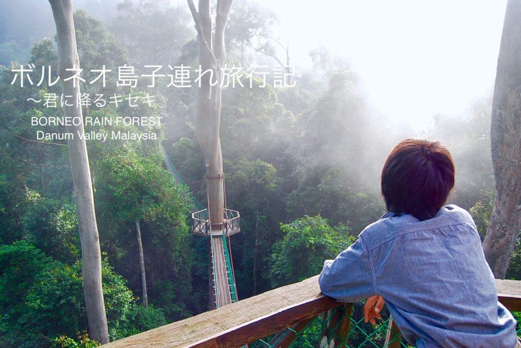 ボルネオ島の熱帯雨林の森を見下ろす長男