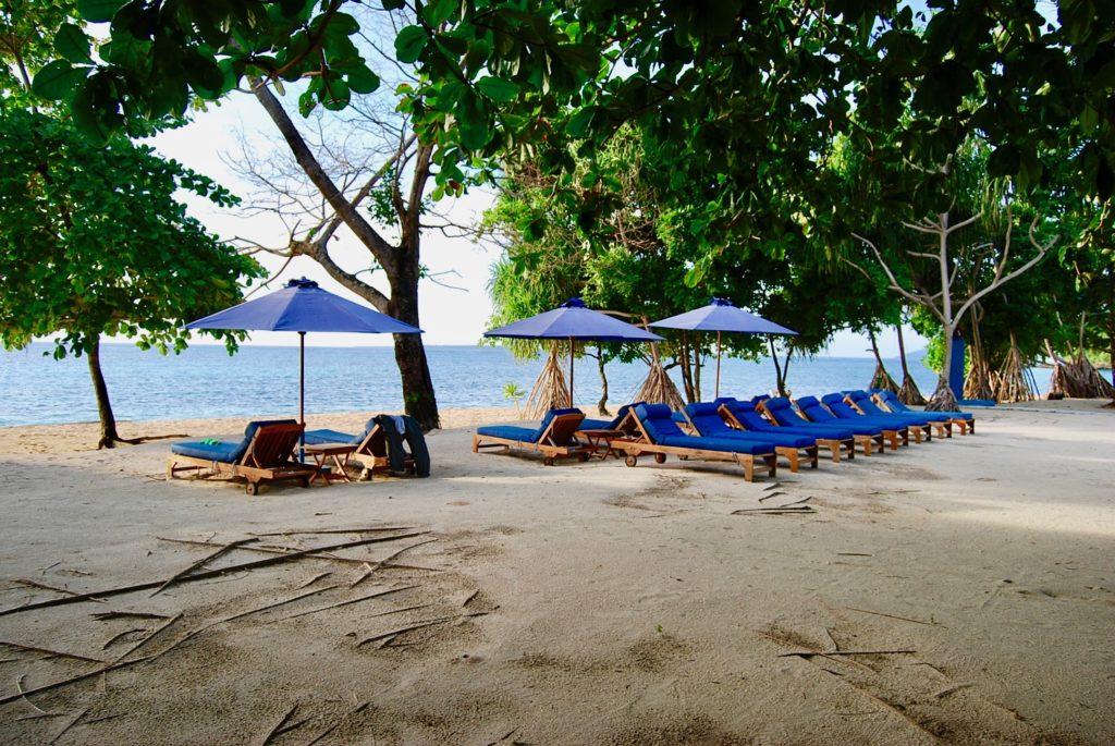ビーチに並べられた青いパラソルとビーチベッド