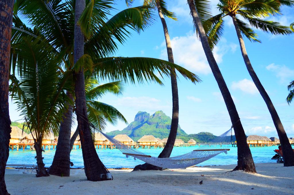 ボラボラ島のヤシの木のビーチとハンモック