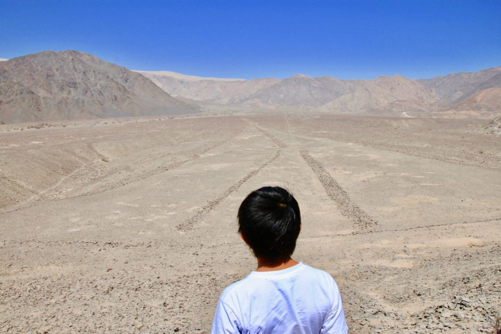 丘の頂上から眺めるエルテラールの地上絵