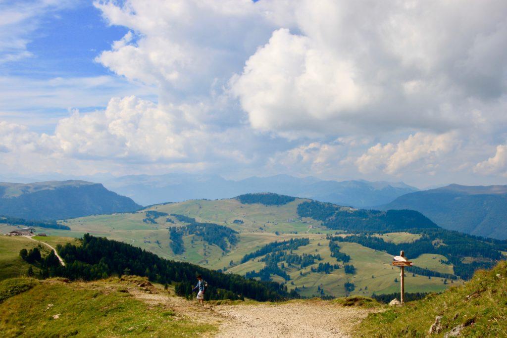 シウジ高原の景色