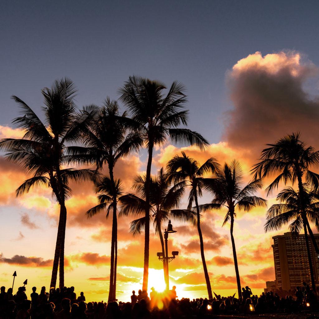 ヤシの木のシルエットとオレンジ色に染まるハワイの夕空