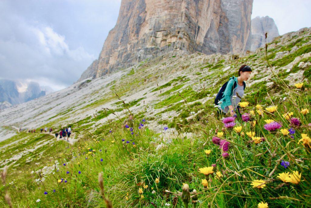 トレイルの途中に咲く花