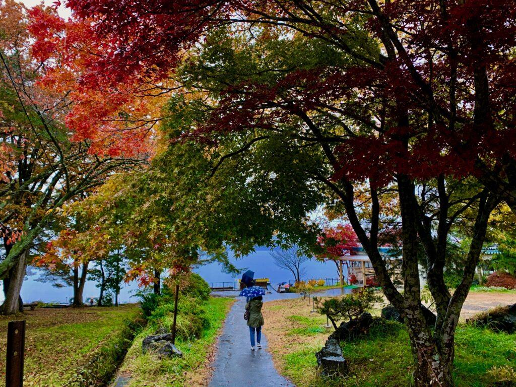 レストハウスの駐車場から田沢湖畔へ続く小径