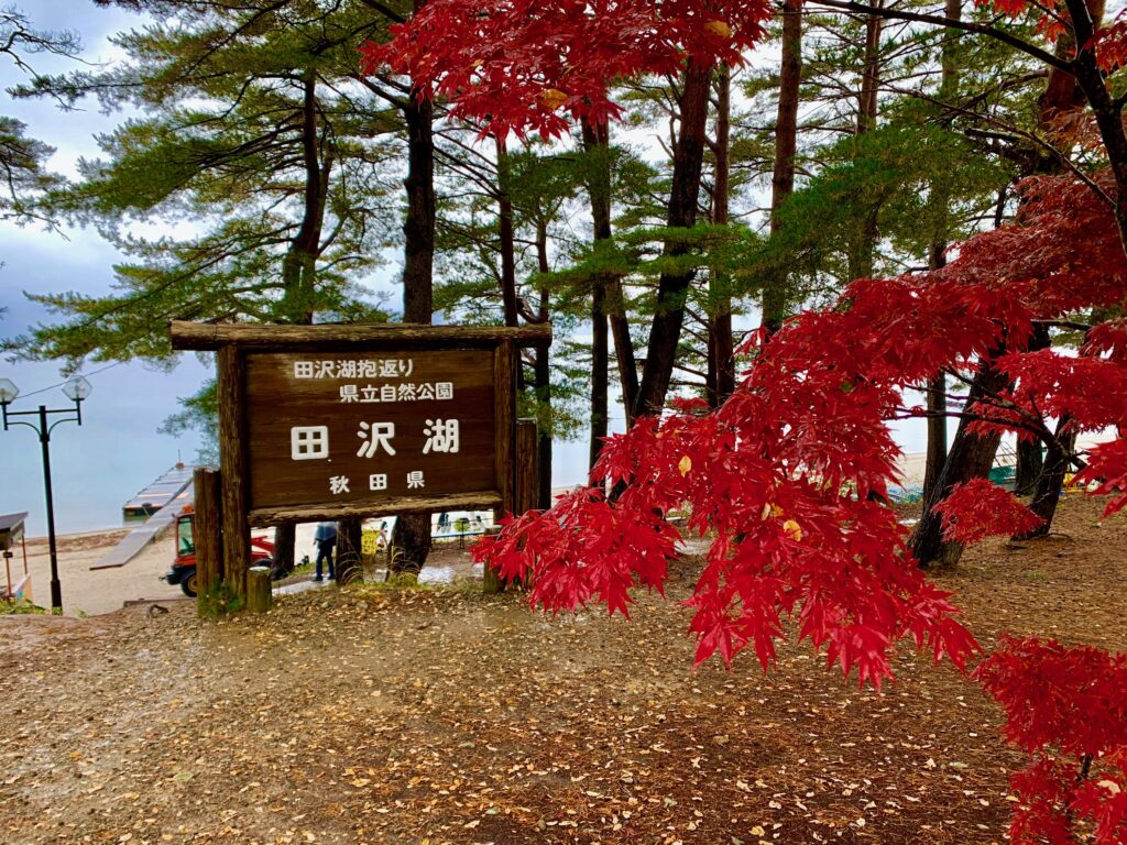 紅葉の田沢湖畔