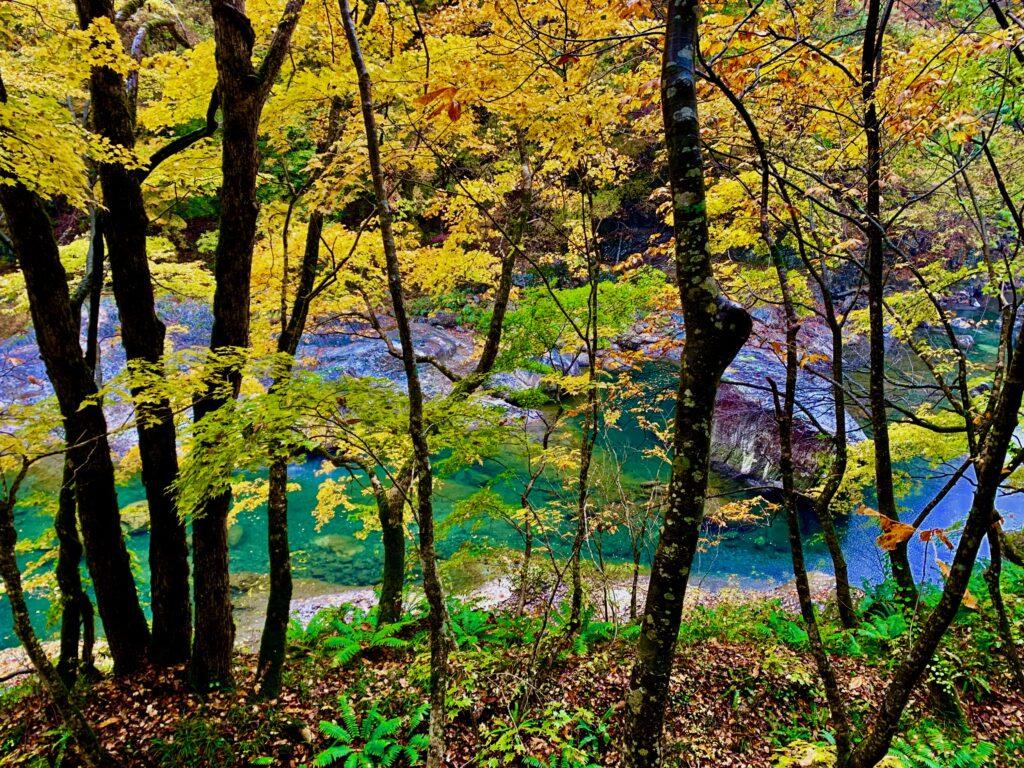 秋田県・抱返り渓谷の紅葉
