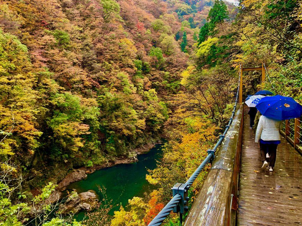 抱返り渓谷の見どころの一つ、誓願橋