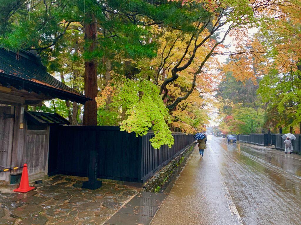 晩秋の雨にしっとり濡れる角館の街並み